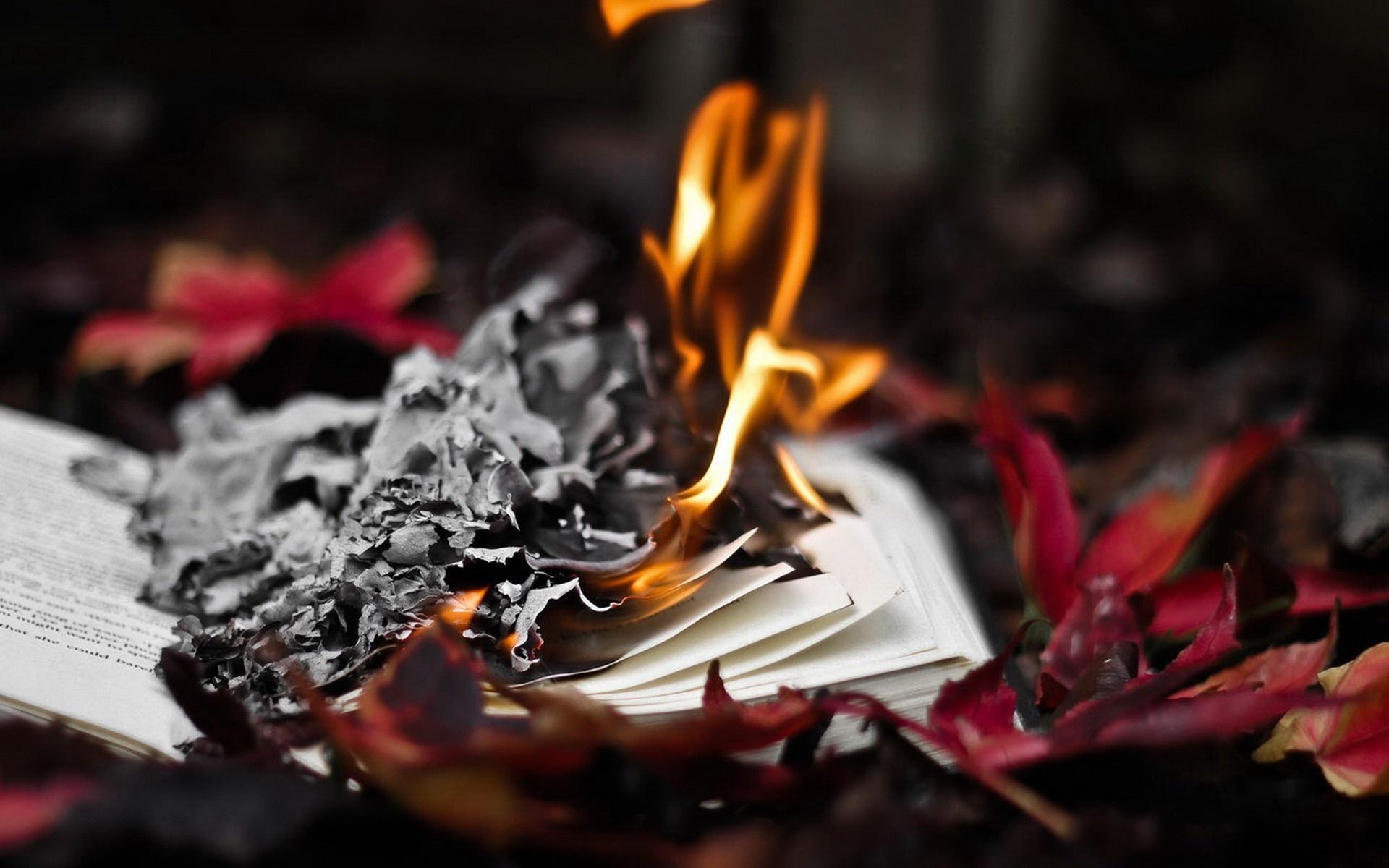 В Пушкинской библиотеке ликвидирован пожар стопки книг